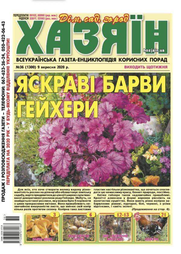 """Хазяїн"" №36/2020"