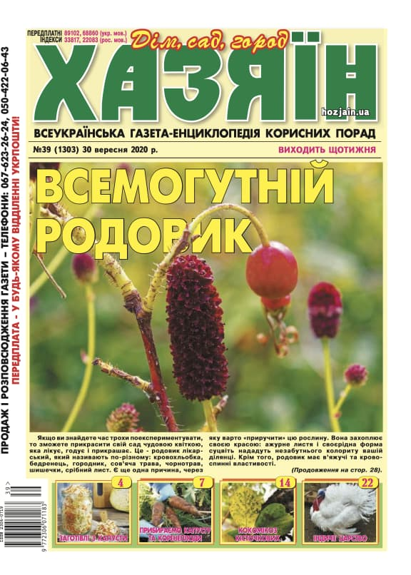 """Хазяїн"" №39/2020"