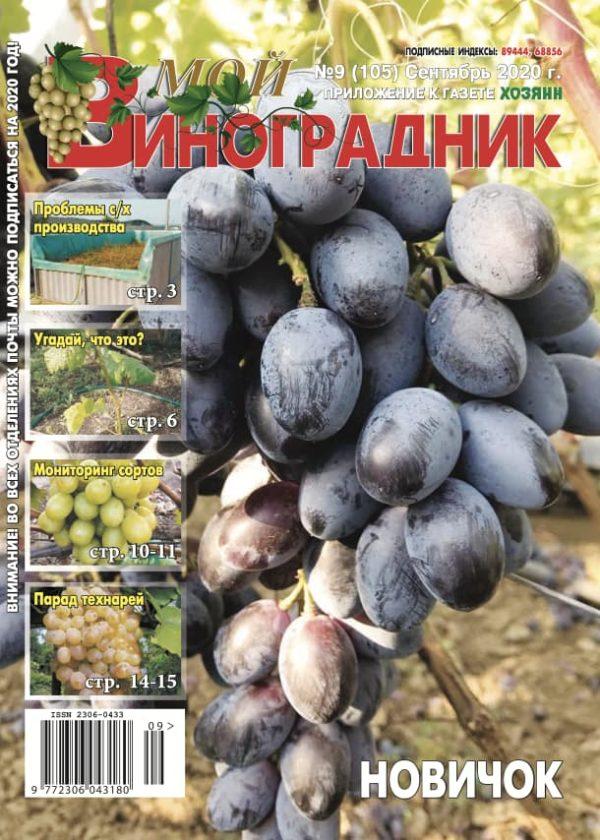 Мой виноградник, №9 2020