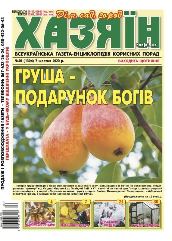 """Хазяїн"" №40/2020"