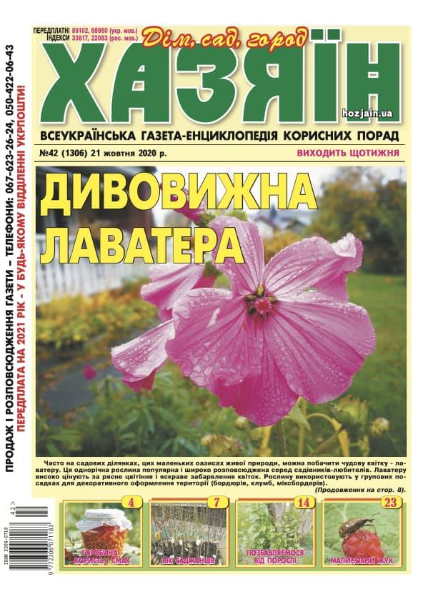 """Хазяїн"" №42/2020"