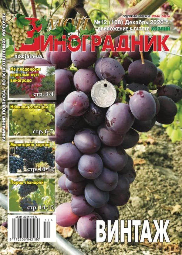 Мой виноградник, №12 2020
