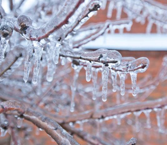 Морозы, снежный наст и обледенение