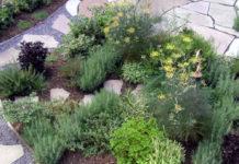 Садово-огородный креатив