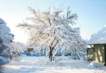 Как удержать снег