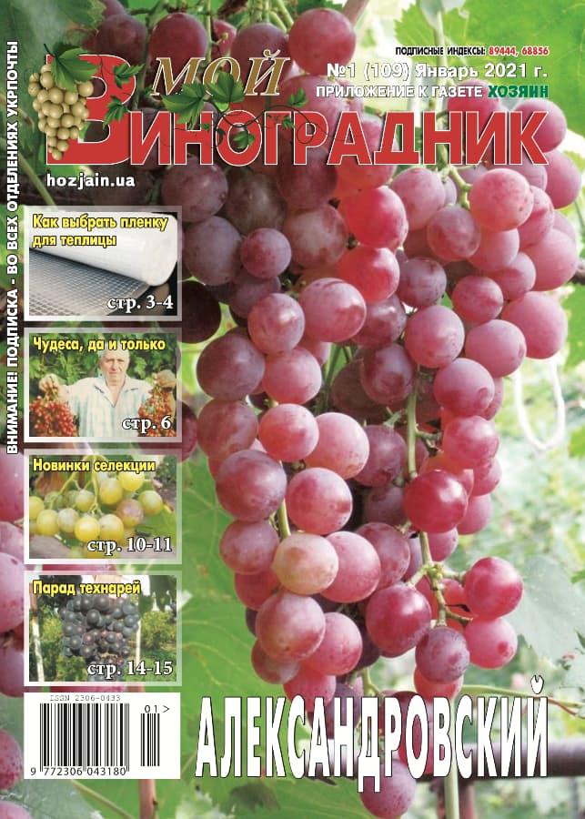 Мой виноградник, №1 2021