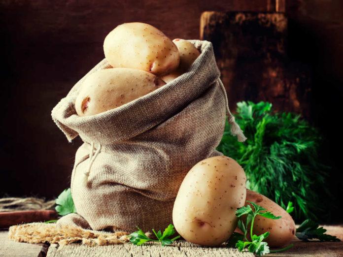 Свой картофель - уже к началу лета