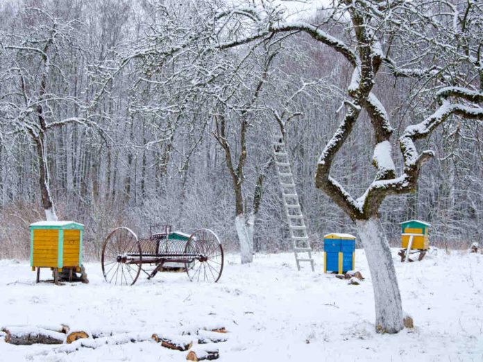 Перевал зимы