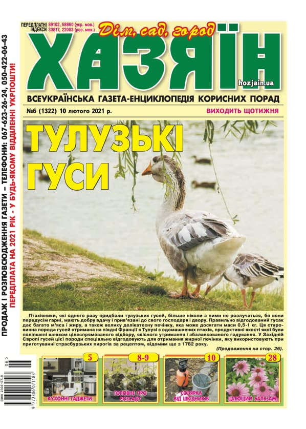 """Хазяїн"" №6/2021"