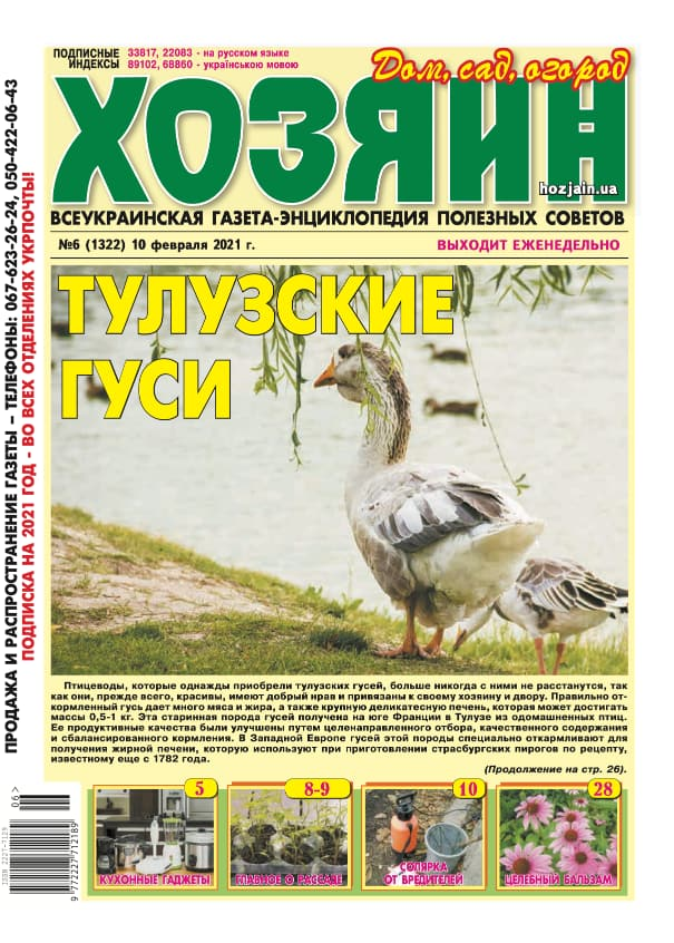 """Хозяин"" №6/2021"