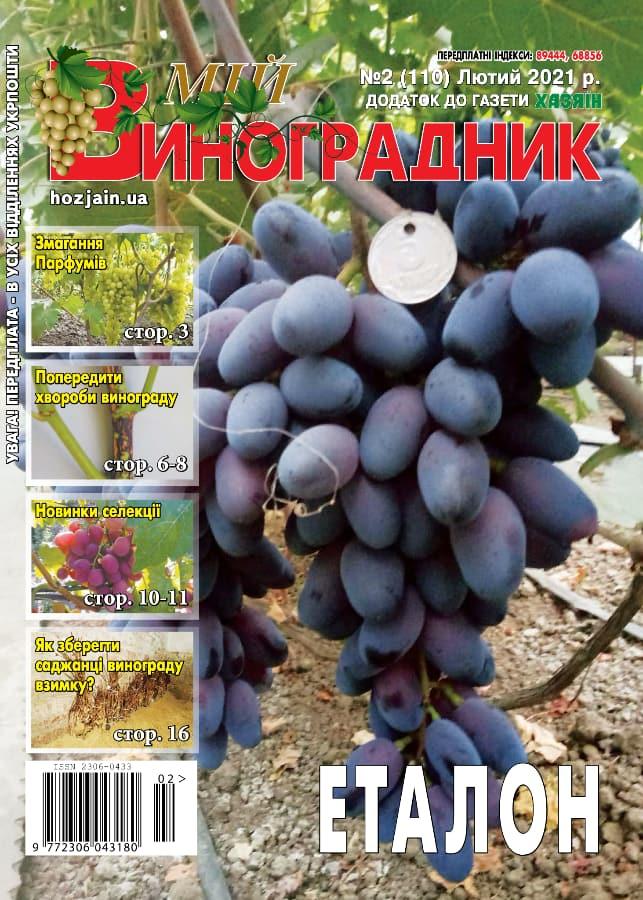 Мій виноградник №2/2021
