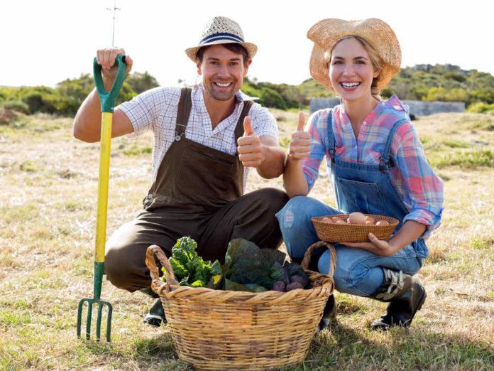 Садово-огородный гардероб