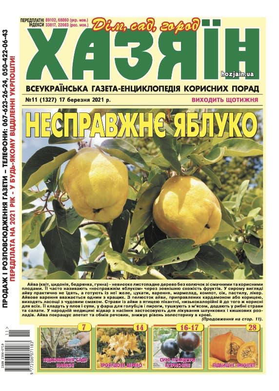 """Хазяїн"" №11/2021"