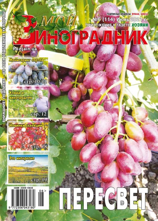 Мой виноградник №06/2021