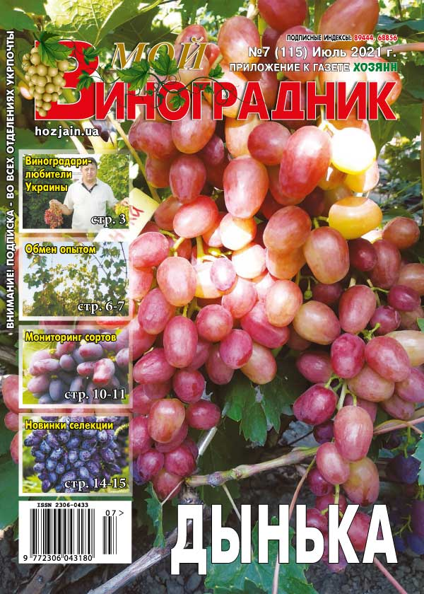 Мой виноградник №07/2021