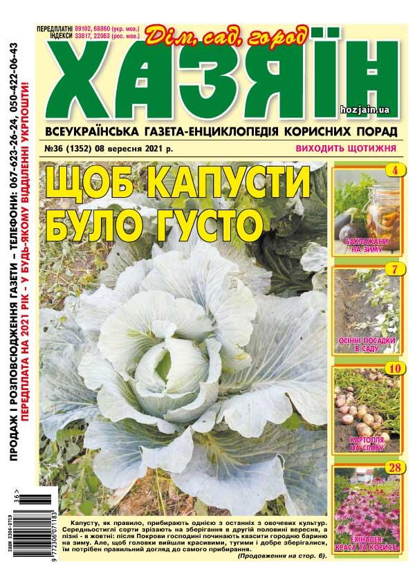 """Хазяїн"" №36/2021"