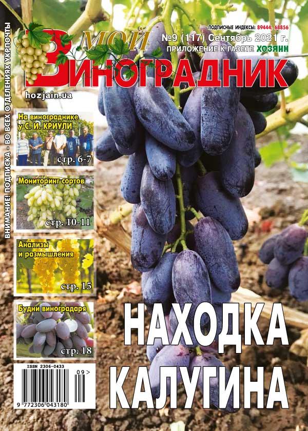 Мой виноградник №09/2021