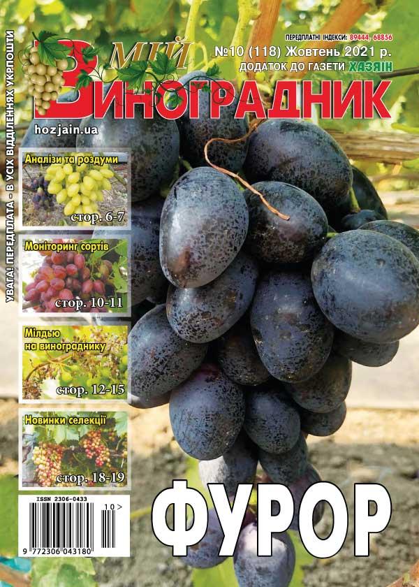 Мій виноградник №10/2021